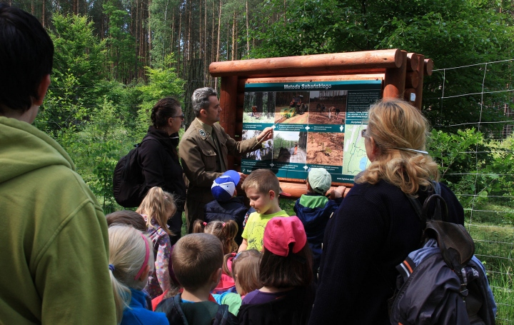 Dofinansowanie modernizacji ścieżki przyrodniczo-leśnej